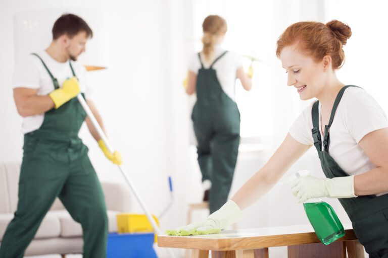 Cleaning service during work